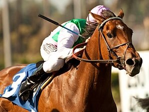 Emollient Returns to Santa Anita for Gamely