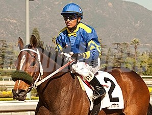 Stormy Lucy running in the Santa Ana Stakes.
