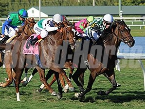 Centre Court (right) holds off Kitten's Point to win the Honey Fox Stakes.
