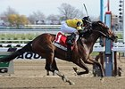 Empire Dreams Stretches Out in New York Derby