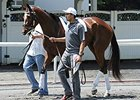 Untapable Favored in Haskell Against Boys