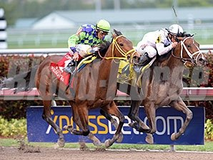 Constitution gets through on the inside to win the Florida Derby.