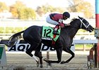 Haskin: New King of the Derby Trail