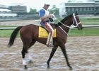 Kentucky Derby News Minute - 04/30/09