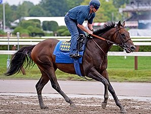 Bayern Gallops 1 1/2 Miles On Eve of Travers