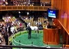F-T Saratoga: Sale-Topping Tapit Filly Day 1