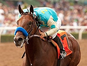 American Pharoah Is Champion 2 Year Old Male Bloodhorse Com