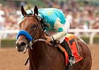 American Pharoah Drills for BC Juvenile