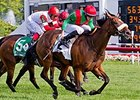 Dubai Turf Ultimate Target for Euro Charline