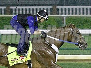 Tapiture breezed four furlongs in :50 on the sloppy track at Churchill on April 28, 2014.