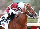 Winchell Stays the Course With Asmussen