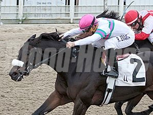 "Gantry <br><a target=""blank""http://photos.bloodhorse.com/AtTheRaces-1/at-the-races-2013/27257665_QgCqdh#!i=2937099568&k=wkGJqBj"">Order This Photo</a>"