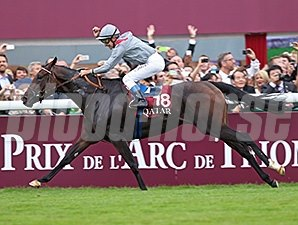 Treve shared top honors with Black Caviar.