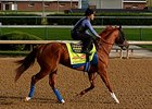 Chitu Posts 'Solid' Work for Kentucky Derby