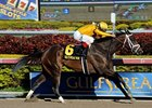 Kauai Katie Heads Pletcher Victory Ride Trio