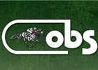 OBS August Yearling Sale Begins Aug. 20