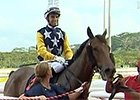 Singapore Gold Cup - Leading Jockey Joao Moreira