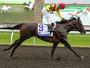 Shadwell Turf Mile to Offer $1 Million Purse