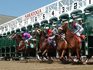 Officials Examining Horse Deaths at Saratoga