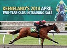 Horses to Watch at Keeneland April 2YO Sale
