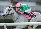 Discreet Marq Stands Out in Ticonderoga