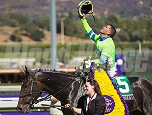 "Breeders' Cup Juvenile Fillies winner Ria Antonia will make her first start of the year in the Rachel Alexandra.<br><a target=""blank"" href=""http://photos.bloodhorse.com/BreedersCup/2013-Breeders-Cup/Juvenile-Fillies/33149847_tj7RjQ#!i=2878056060&k=rg29sHm"