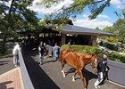Keeneland Alters September Sale Format