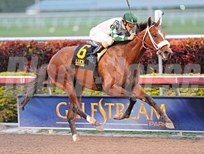 Mucho Macho Man won the 2012 Sunshine Millions Classic.