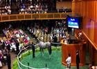F-T Saratoga: $1 Million Tapit Daughter
