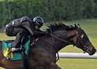 Fillies Sparkle in Furlong Drills at OBS