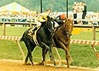 Easy Goer vs. Sunday Silence
