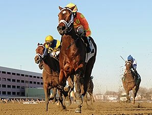 Fierce Boots Stamps Busanda Stakes Upset
