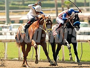 Declassify (right) fights back on the inside to win the Triple Bend Stakes.