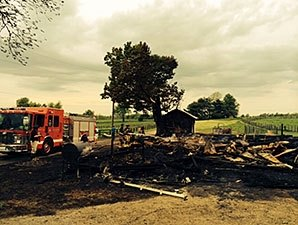 Eight Horses Die in Barn Fire Near Keeneland