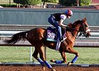 Main Sequence Can Cap Big Season in BC Turf
