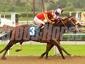 Drill wins the San Vicente Stakes.