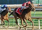 Sassy Image Picture Perfect in Golden Rod Win