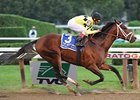 Breeders' Cup Classic Next for Quality Road