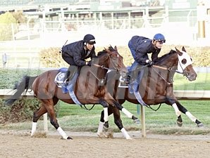 Hurricane Ike works towards the Breeders' Cup Oct. 24, 2010.