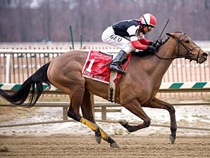 Fritchie Winner Tries Aqueduct's Distaff