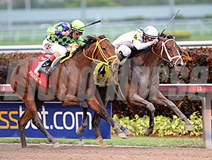 Constitution wins the 2014 Florida Derby.