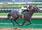 Saratoga Stakes Probables Announced