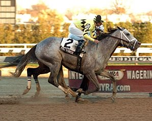 Pletcher Sends Out Trio In Chicago 'Cap