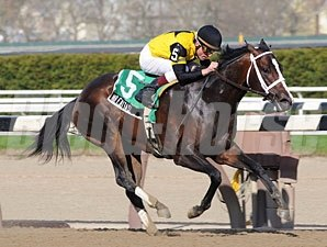 Mr Fantasy wins the 2009 Withers.