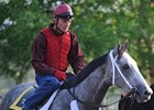 Macho Again Works Toward Belmont
