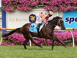 Black Caviar Keeps on Rolling, Gets 18th Win