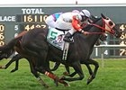 Ben's Cat Still After Third Turf Monster Win