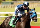 Camp Victory, Coil to Battle in Pat O'Brien