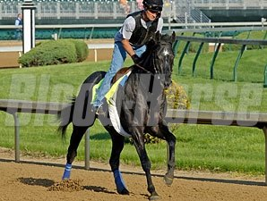 Mylute - Churchill Downs, May 1, 2013.