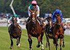 Frankel Stays Unbeaten with Sussex Score
